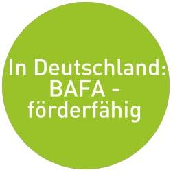 Partikelabscheider BAFA-förderfähig