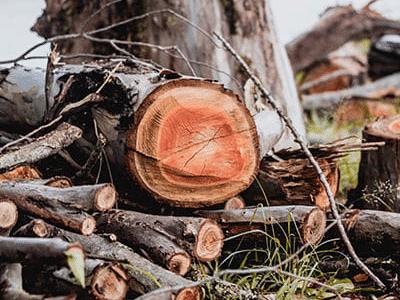 Holzenergie / Holzheizung